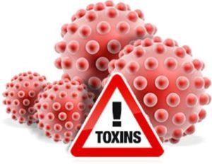 toxini